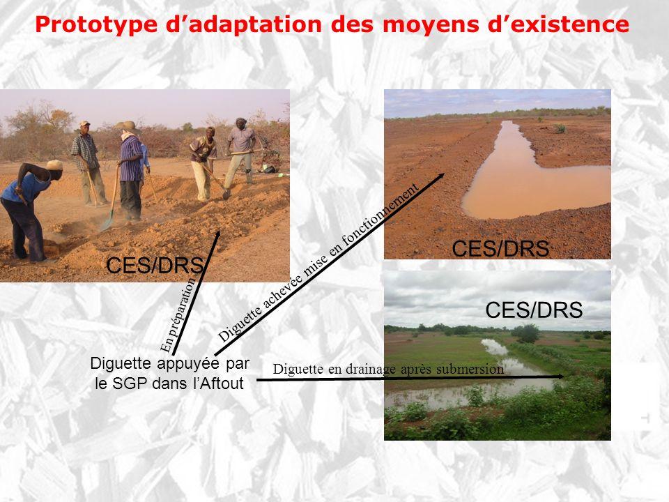 Prototype dadaptation des moyens dexistence CES/DRS Diguette appuyée par le SGP dans lAftout En préparation Diguette achevée mise en fonctionnement Di