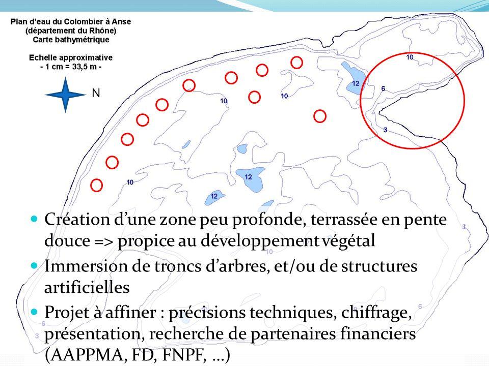 Création dune zone peu profonde, terrassée en pente douce => propice au développement végétal Immersion de troncs darbres, et/ou de structures artificielles Projet à affiner : précisions techniques, chiffrage, présentation, recherche de partenaires financiers (AAPPMA, FD, FNPF, …) N