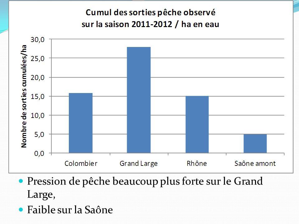 Pression de pêche beaucoup plus forte sur le Grand Large, Faible sur la Saône