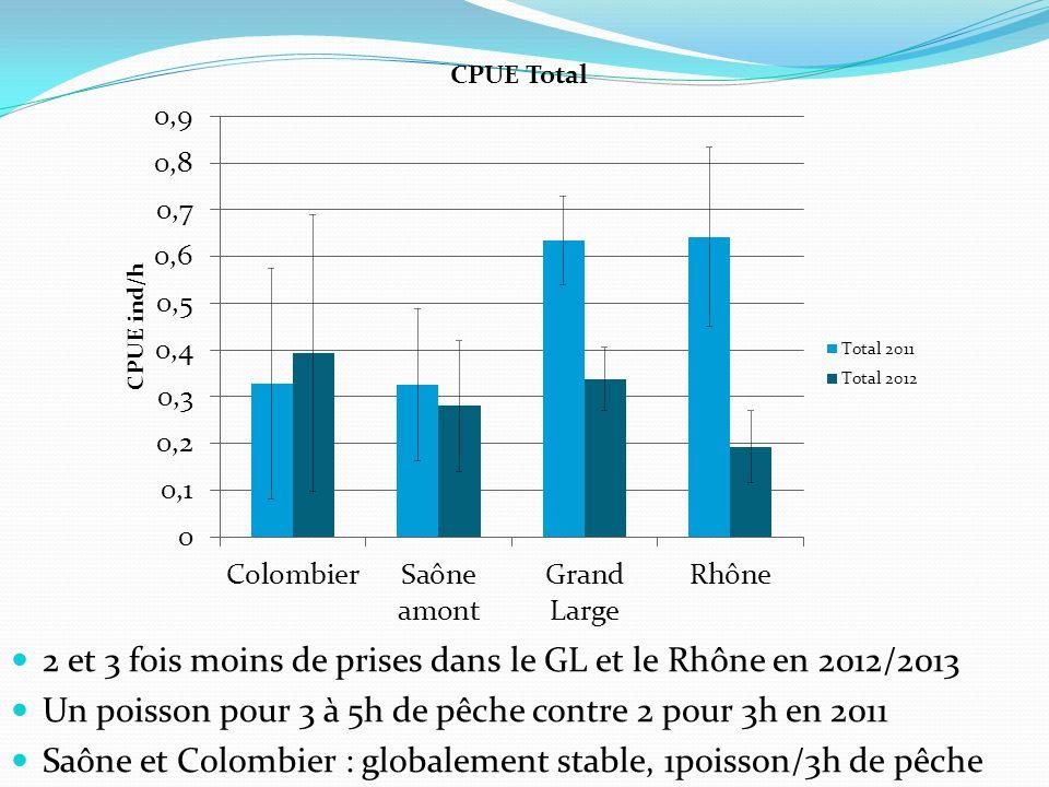 Saône amont : Perche : réduction de 44% (1/9h) Sandre : +50% (1/8h) Colombier : Perche : 1/4h Brochet : 1/7h Grand Large : Saison 2011 : 1 brochet pour 2h30min => 3h30 en 2012 Réduction de 27% Perche : réduction de 85% (1/28h) Rhône TCC : Perche : réduction de 85% (1/20h) Sandre : réduction de 80% (1/30h)