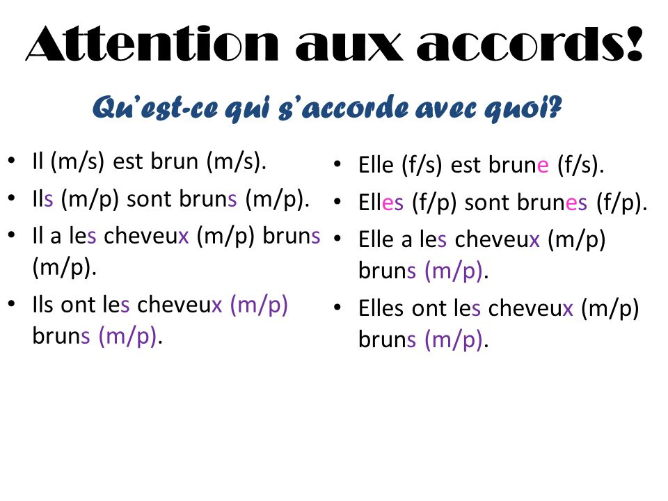 Attention aux accords.Il (m/s) est brun (m/s). Ils (m/p) sont bruns (m/p).