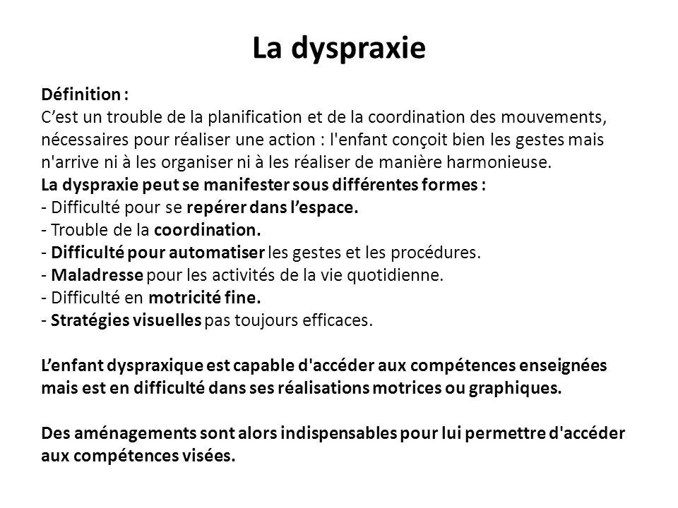La dyspraxie Définition : Cest un trouble de la planification et de la coordination des mouvements, nécessaires pour réaliser une action : l'enfant co