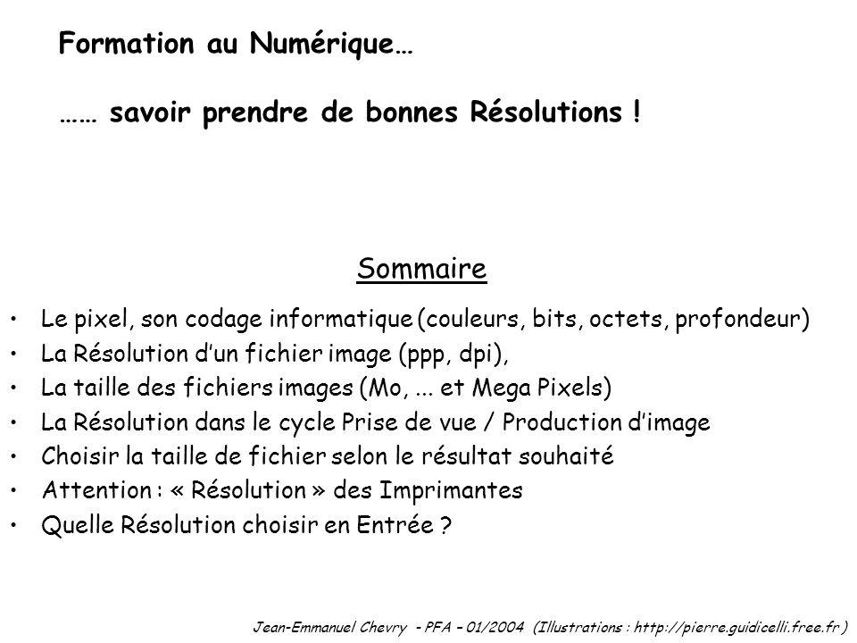 Sommaire Le pixel, son codage informatique (couleurs, bits, octets, profondeur) La Résolution dun fichier image (ppp, dpi), La taille des fichiers ima