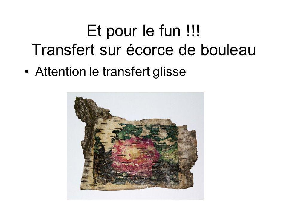 Et pour le fun !!! Transfert sur écorce de bouleau Attention le transfert glisse