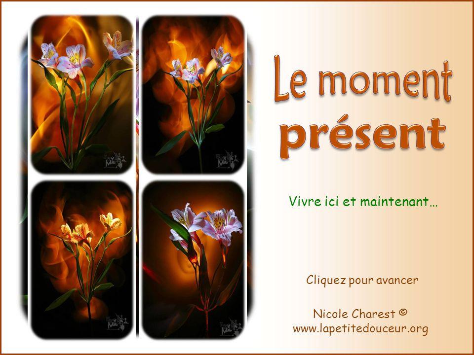 Vivre ici et maintenant… Nicole Charest © www.lapetitedouceur.org Cliquez pour avancer