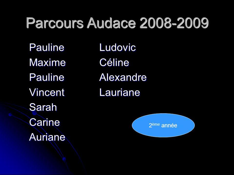 Parcours Audace 2008-2009 PaulineLudovic Maxime Céline Pauline Alexandre VincentLauriane SarahCarineAuriane 2 ème année