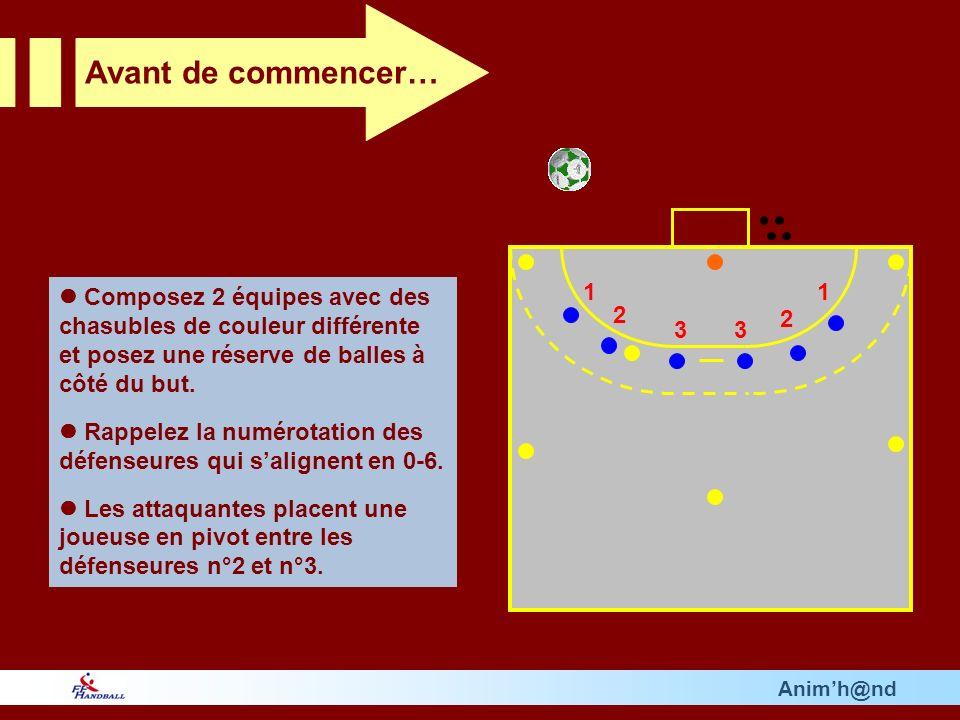 Animh@nd Composez 2 équipes avec des chasubles de couleur différente et posez une réserve de balles à côté du but.