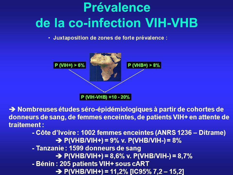 Histoire naturelle du VHB en présence du VIH espérance de vie + infections opportunistes Décès de cause hépatique (Cohorte MACS, Thio, Lancet 2002) des décès non liés au sida (dont 25% par cause hépatique) (Cohorte Eurosida, Mocroft, AIDS 2002) Décès de cause hépatique dans lenquête « Mortalité 2005 » = 2 ème cause de décès non lié au sida en France (Mortavic, E.