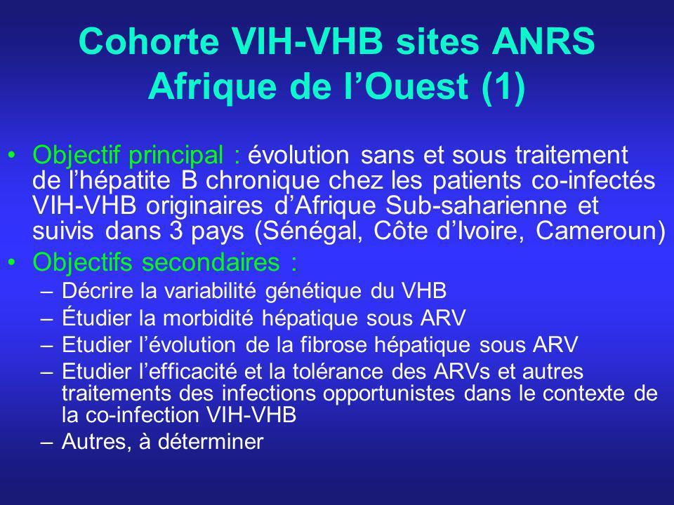 Cohorte VIH-VHB sites ANRS Afrique de lOuest (1) Objectif principal : évolution sans et sous traitement de lhépatite B chronique chez les patients co-infectés VIH-VHB originaires dAfrique Sub-saharienne et suivis dans 3 pays (Sénégal, Côte dIvoire, Cameroun) Objectifs secondaires : –Décrire la variabilité génétique du VHB –Étudier la morbidité hépatique sous ARV –Etudier lévolution de la fibrose hépatique sous ARV –Etudier lefficacité et la tolérance des ARVs et autres traitements des infections opportunistes dans le contexte de la co-infection VIH-VHB –Autres, à déterminer