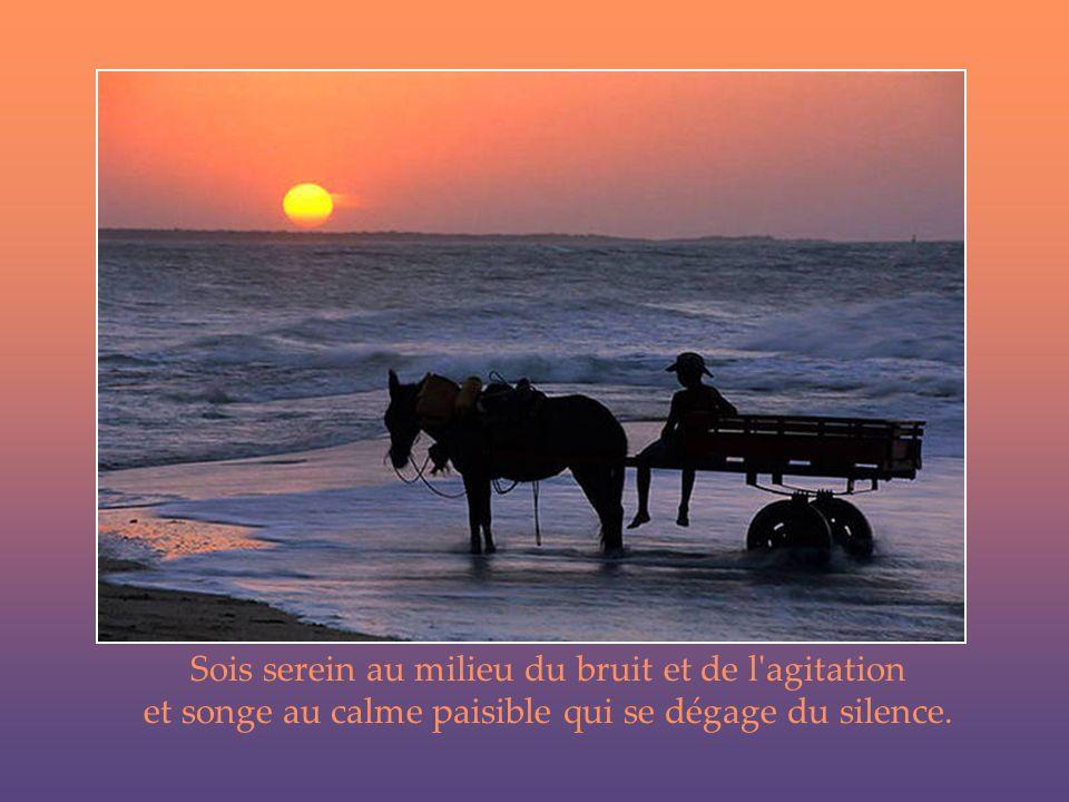 Sois serein Andre Rieu : « Guten Abend, gut nacht »