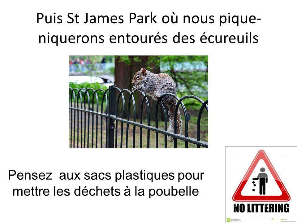 Puis St James Park où nous pique- niquerons entourés des écureuils Pensez aux sacs plastiques pour mettre les déchets à la poubelle