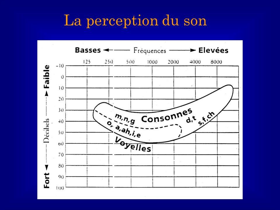 La perception du son