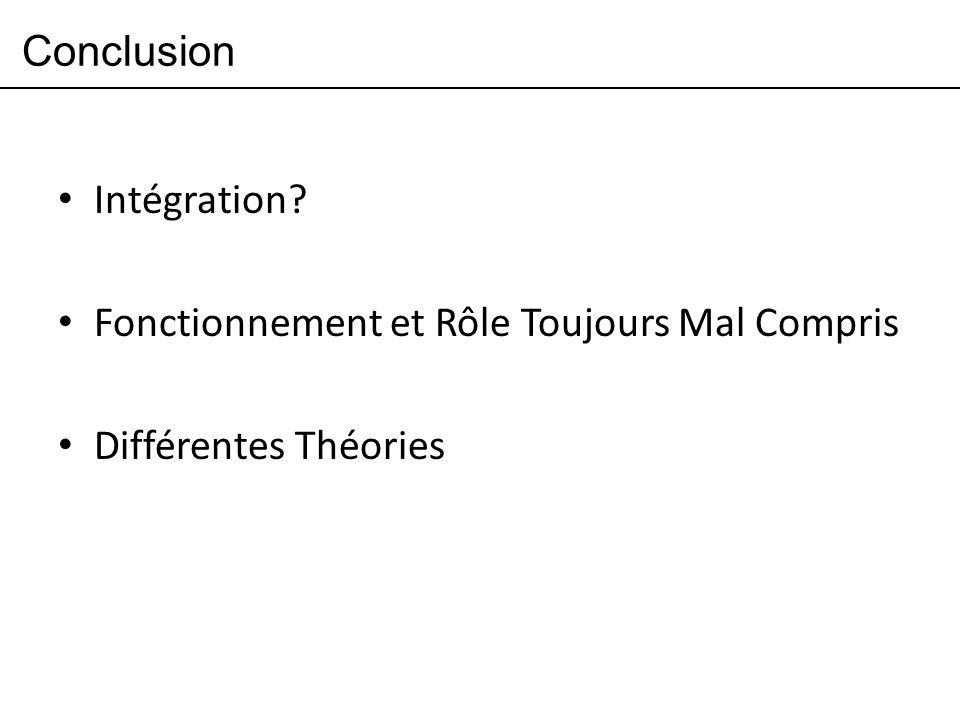Conclusion Intégration? Fonctionnement et Rôle Toujours Mal Compris Différentes Théories