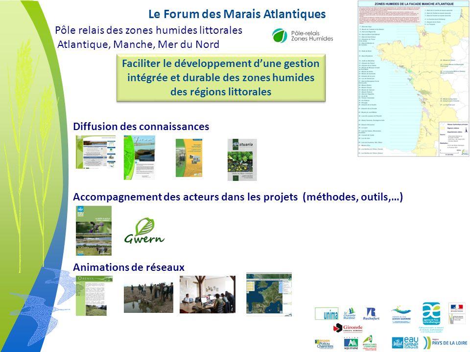 1 - Le produit Litto3D à lépreuve des marais en eau Extraction sursol : Sous-estimation 13