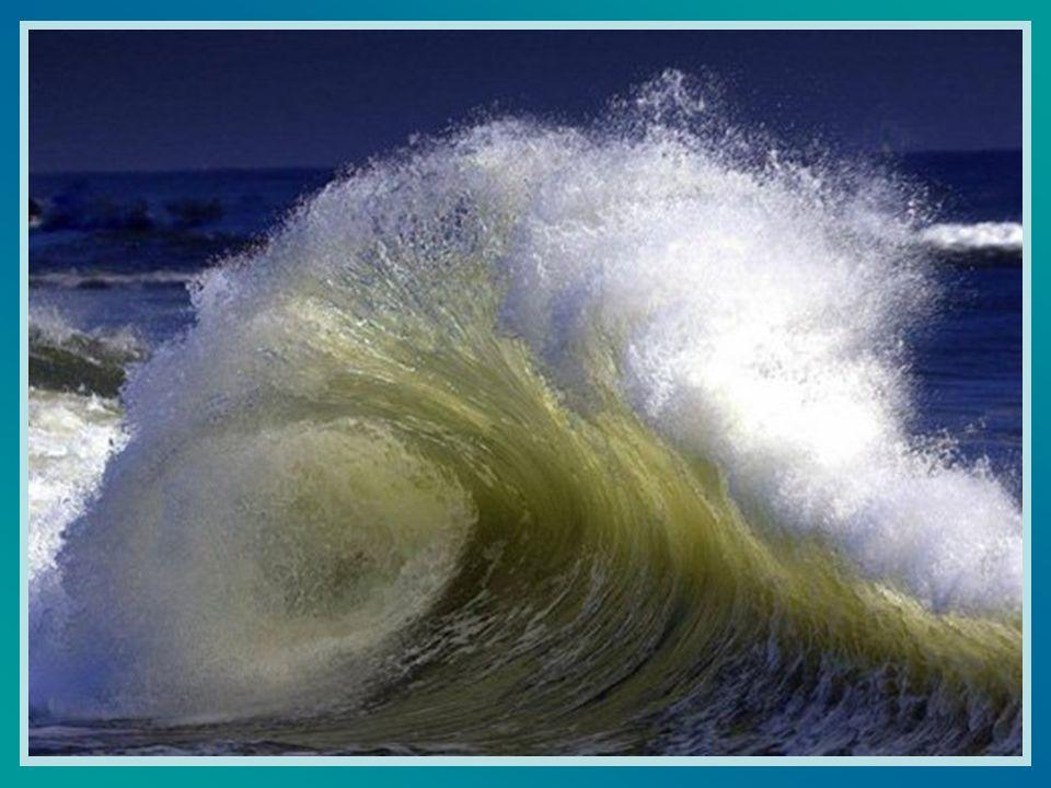 Les vagues, de loin, prenaient leur élan.