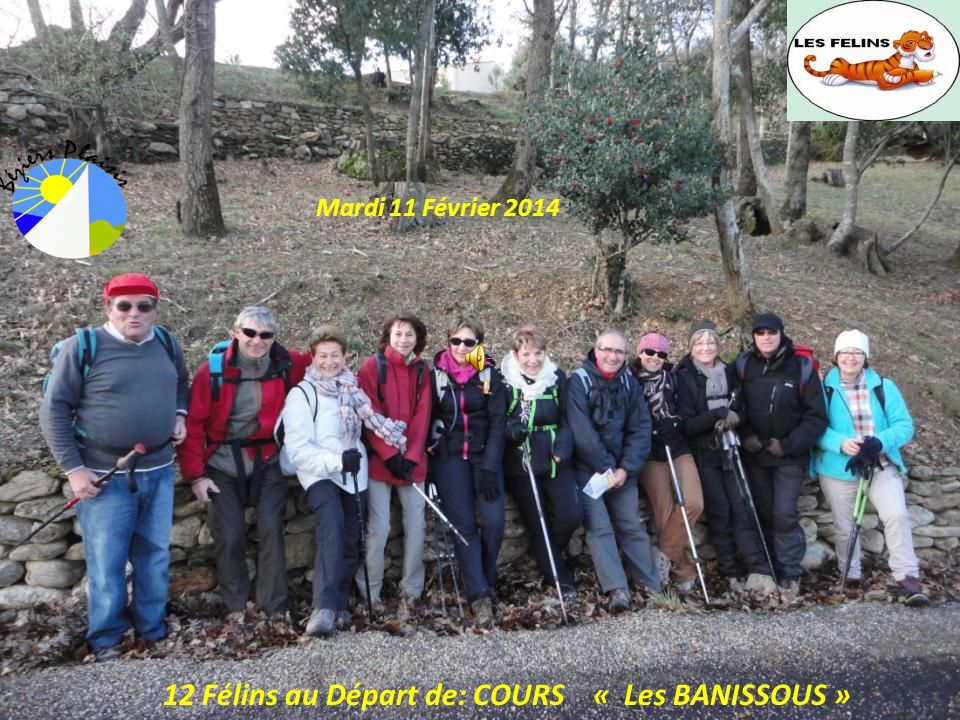 12 Félins au Départ de: COURS « Les BANISSOUS » Mardi 11 Février 2014