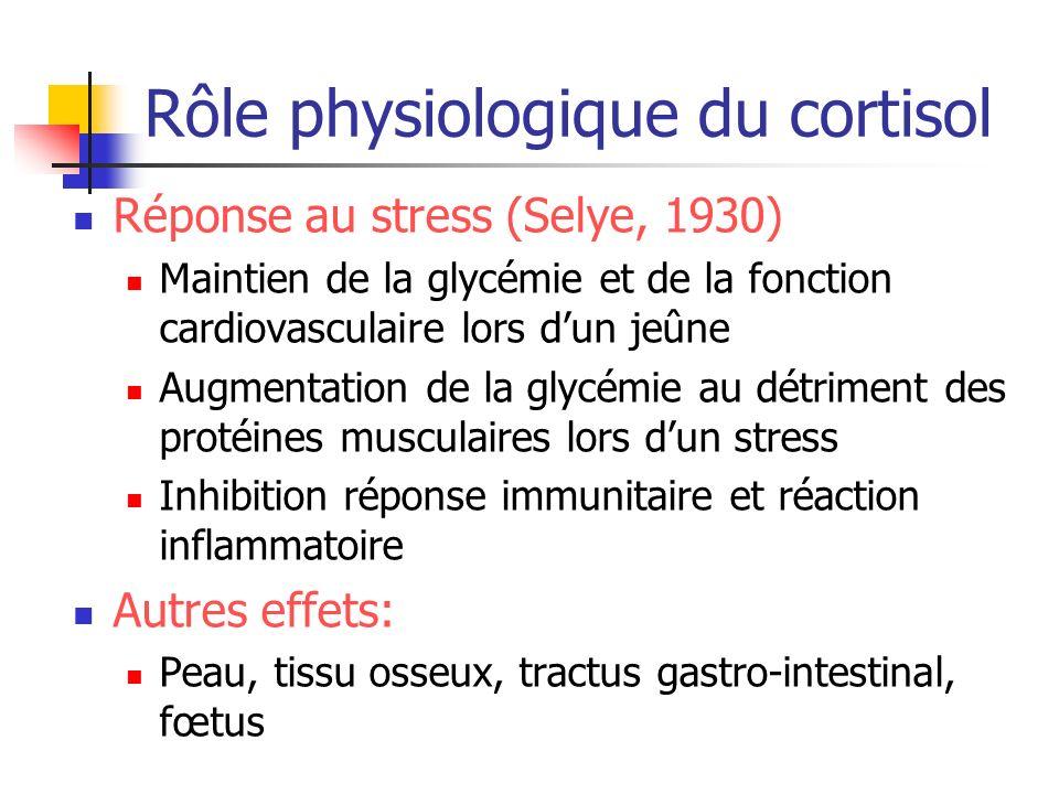 Rôle physiologique du cortisol Réponse au stress (Selye, 1930) Maintien de la glycémie et de la fonction cardiovasculaire lors dun jeûne Augmentation