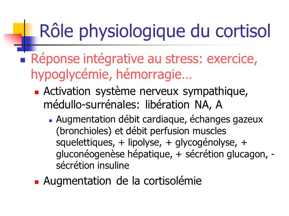 Rôle physiologique du cortisol Réponse intégrative au stress: exercice, hypoglycémie, hémorragie… Activation système nerveux sympathique, médullo-surr