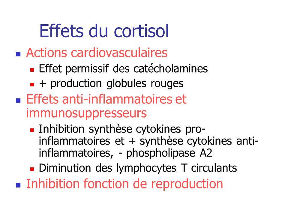 Effets du cortisol Actions cardiovasculaires Effet permissif des catécholamines + production globules rouges Effets anti-inflammatoires et immunosuppr