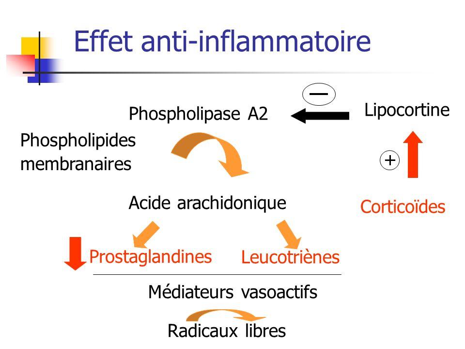 Phospholipase A2 Lipocortine Corticoïdes Acide arachidonique Leucotriènes Prostaglandines Médiateurs vasoactifs Radicaux libres Phospholipides membran
