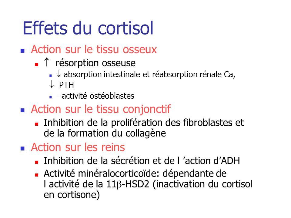 Effets du cortisol Action sur le tissu osseux résorption osseuse absorption intestinale et réabsorption rénale Ca, PTH - activité ostéoblastes Action