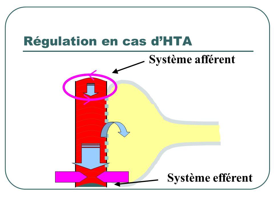 Régulation en cas dHTA Système afférent Système efférent