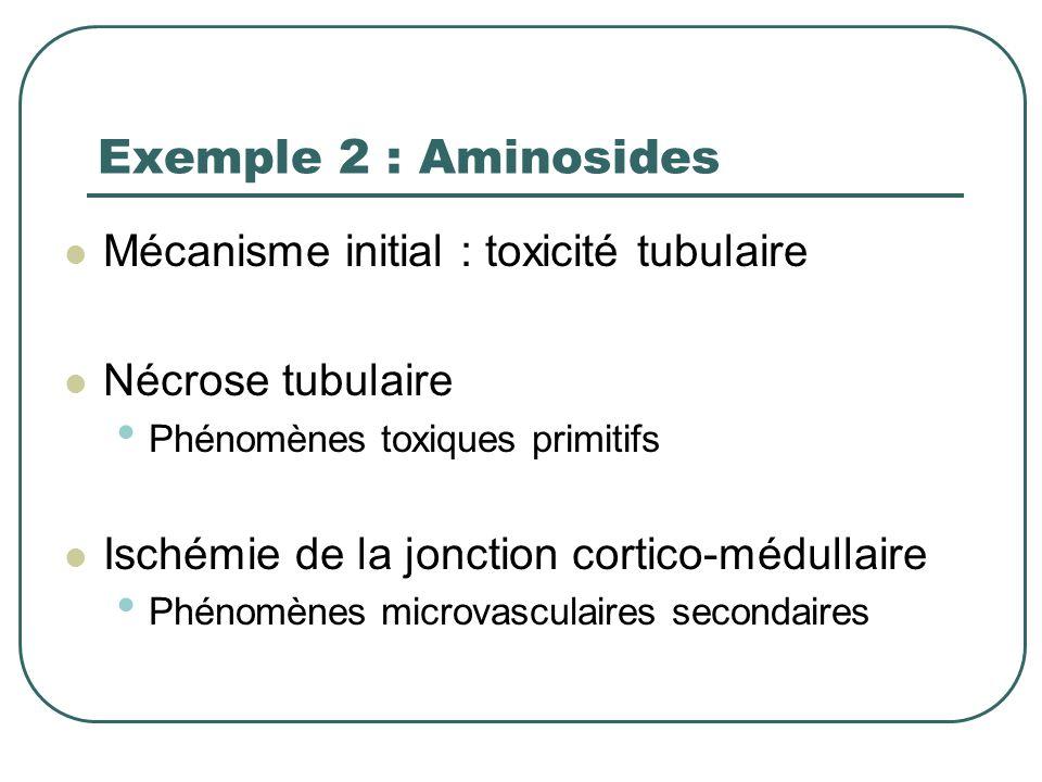 Exemple1 : Choc septique Mécanisme initial : bas débit rénal Ischémie de la jonction cortico-médullaire Phénomènes microvasculaires primitifs Nécrose
