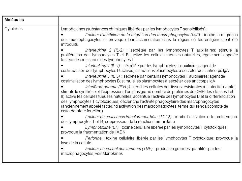 Molécules CytokinesLymphokines (substances chimiques libérées par les lymphocytes T sensibilisés) : Facteur dinhibition de la migration des macrophago