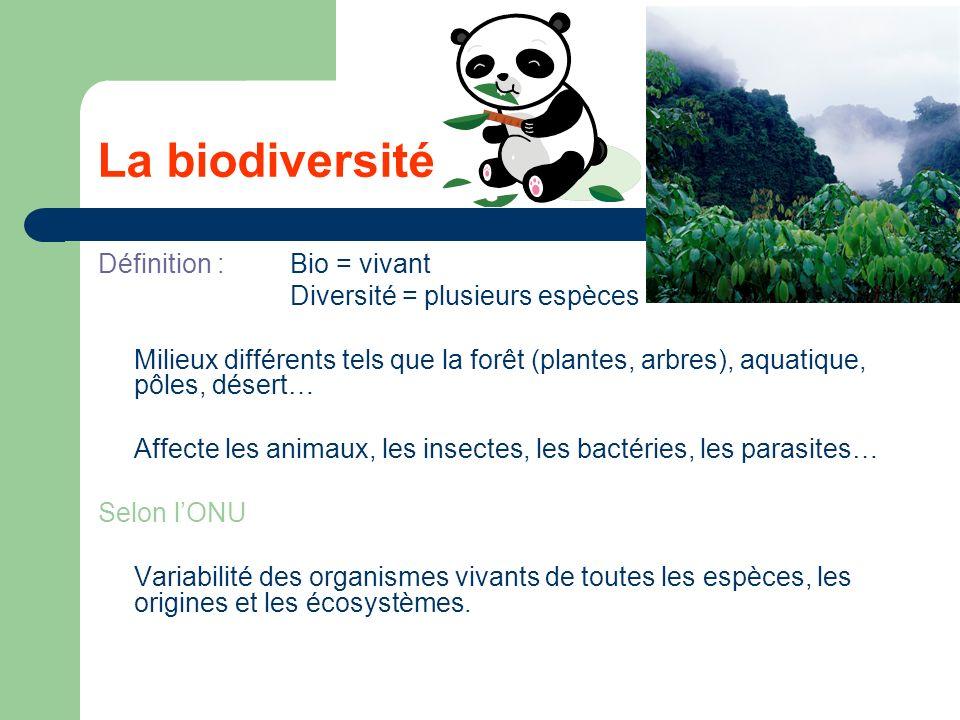 La biodiversité Définition : Bio = vivant Diversité = plusieurs espèces Milieux différents tels que la forêt (plantes, arbres), aquatique, pôles, désert… Affecte les animaux, les insectes, les bactéries, les parasites… Selon lONU Variabilité des organismes vivants de toutes les espèces, les origines et les écosystèmes.