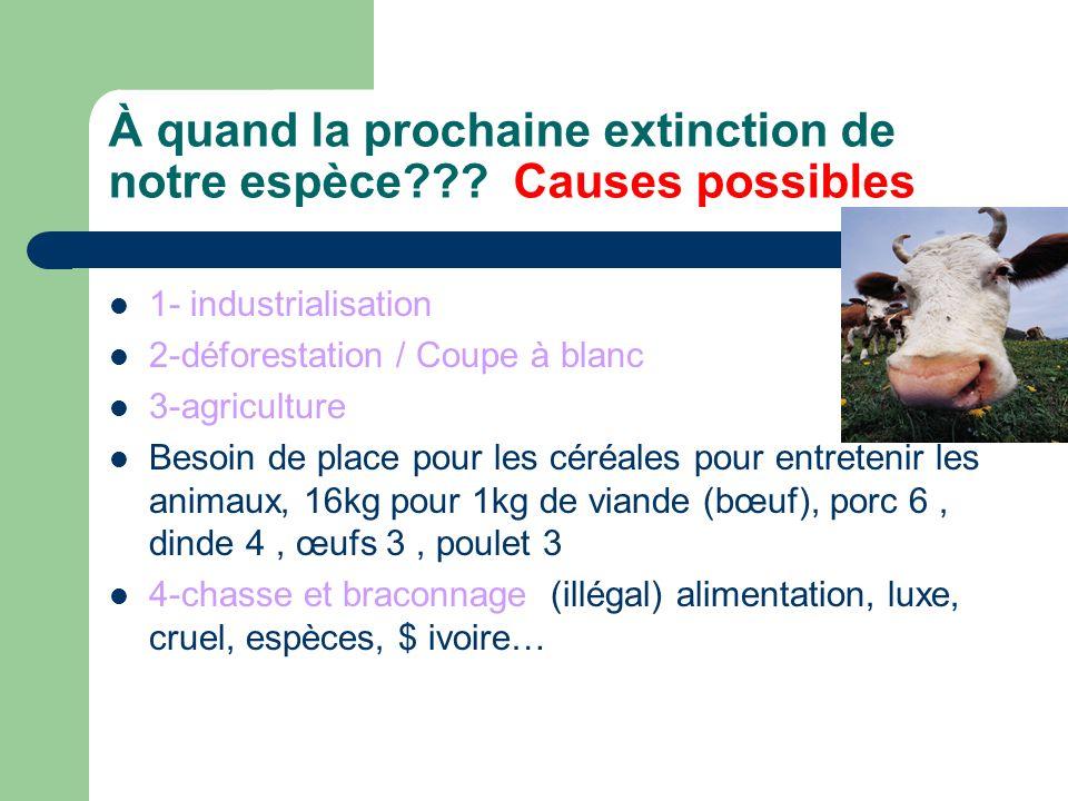 À quand la prochaine extinction de notre espèce??.