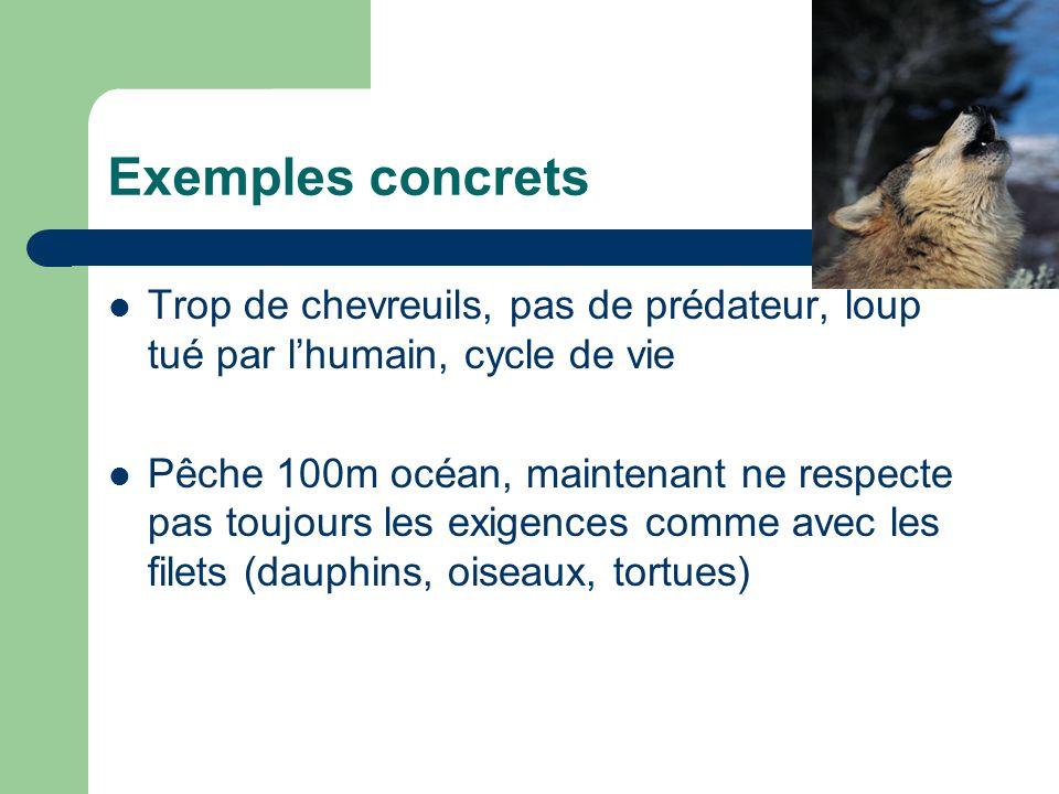 Exemples concrets Trop de chevreuils, pas de prédateur, loup tué par lhumain, cycle de vie Pêche 100m océan, maintenant ne respecte pas toujours les exigences comme avec les filets (dauphins, oiseaux, tortues)