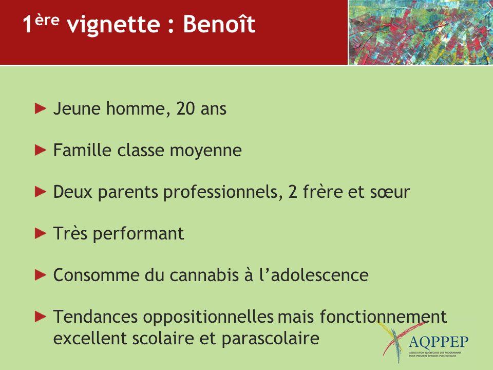 1 ère vignette : Benoît Jeune homme, 20 ans Famille classe moyenne Deux parents professionnels, 2 frère et sœur Très performant Consomme du cannabis à