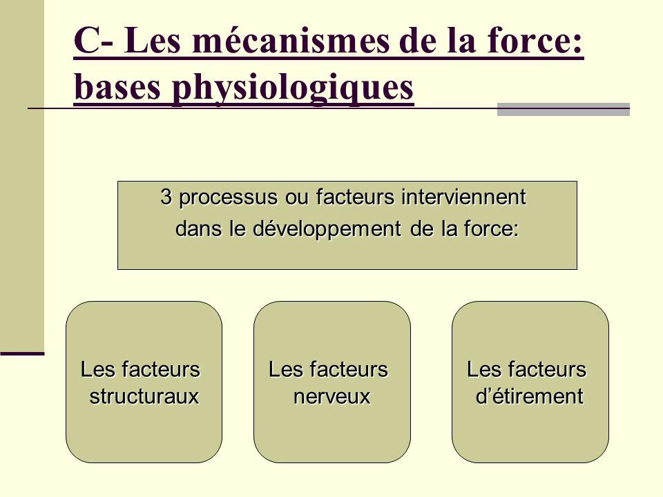 C- Les mécanismes de la force: bases physiologiques Les facteurs structuraux nerveux détirement 3 processus ou facteurs interviennent dans le développ