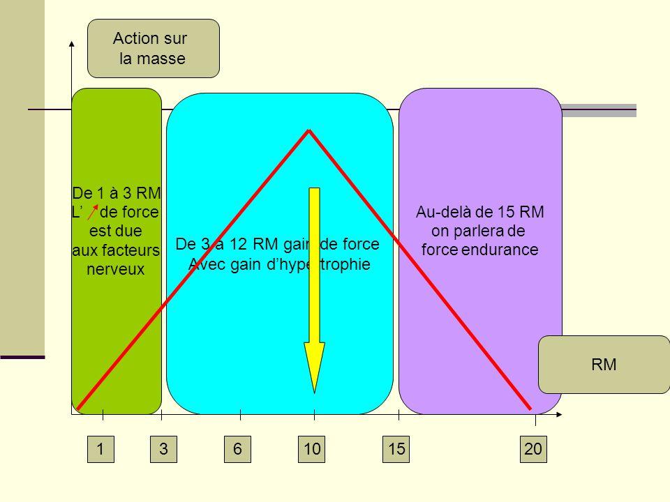 De 3 à 12 RM gain de force Avec gain dhypertrophie Au-delà de 15 RM on parlera de force endurance De 1 à 3 RM L de force est due aux facteurs nerveux