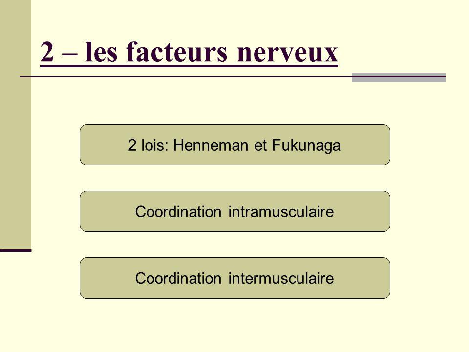 2 – les facteurs nerveux 2 lois: Henneman et Fukunaga Coordination intramusculaire Coordination intermusculaire