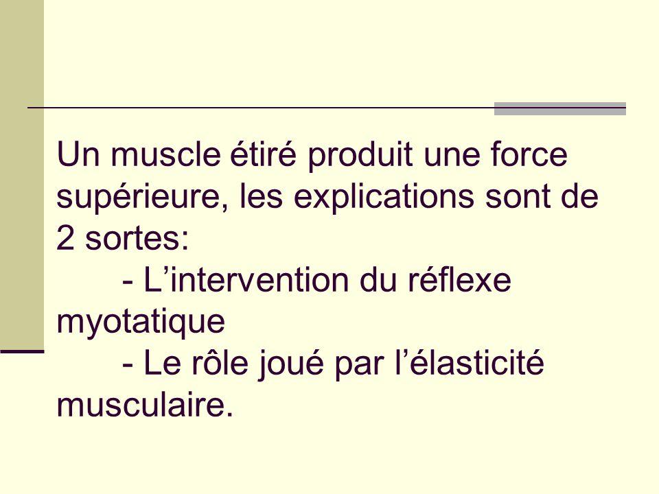 Un muscle étiré produit une force supérieure, les explications sont de 2 sortes: - Lintervention du réflexe myotatique - Le rôle joué par lélasticité