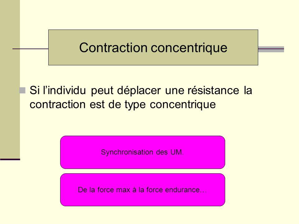 Si lindividu peut déplacer une résistance la contraction est de type concentrique Contraction concentrique Synchronisation des UM. De la force max à l