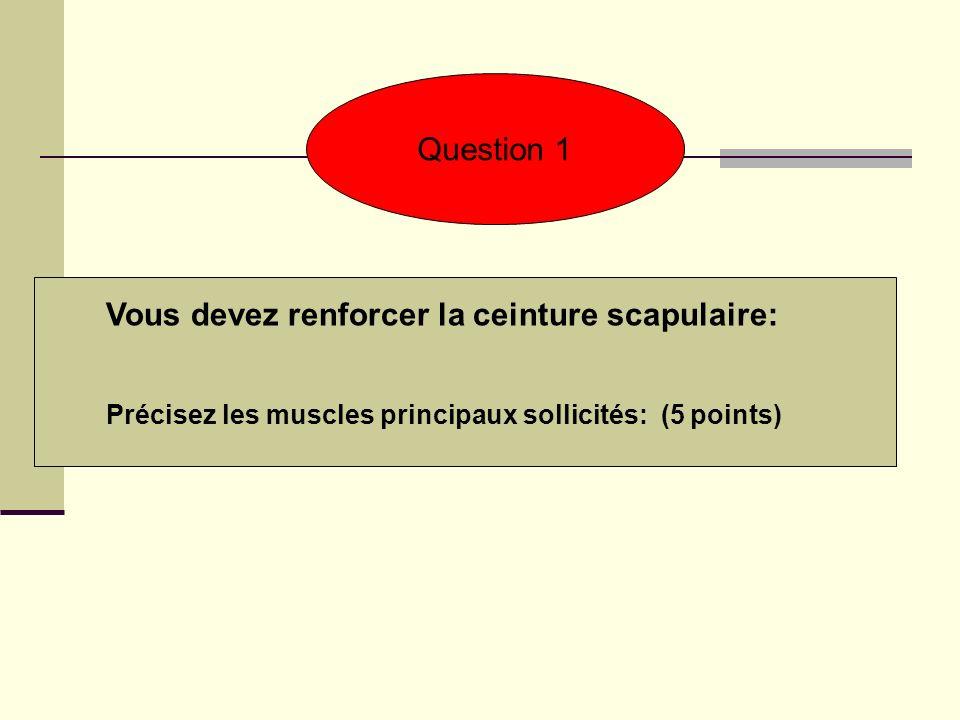 Vous devez renforcer la ceinture scapulaire: Précisez les muscles principaux sollicités: (5 points) Question 1