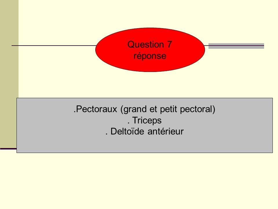 Question 7 réponse.Pectoraux (grand et petit pectoral). Triceps. Deltoïde antérieur