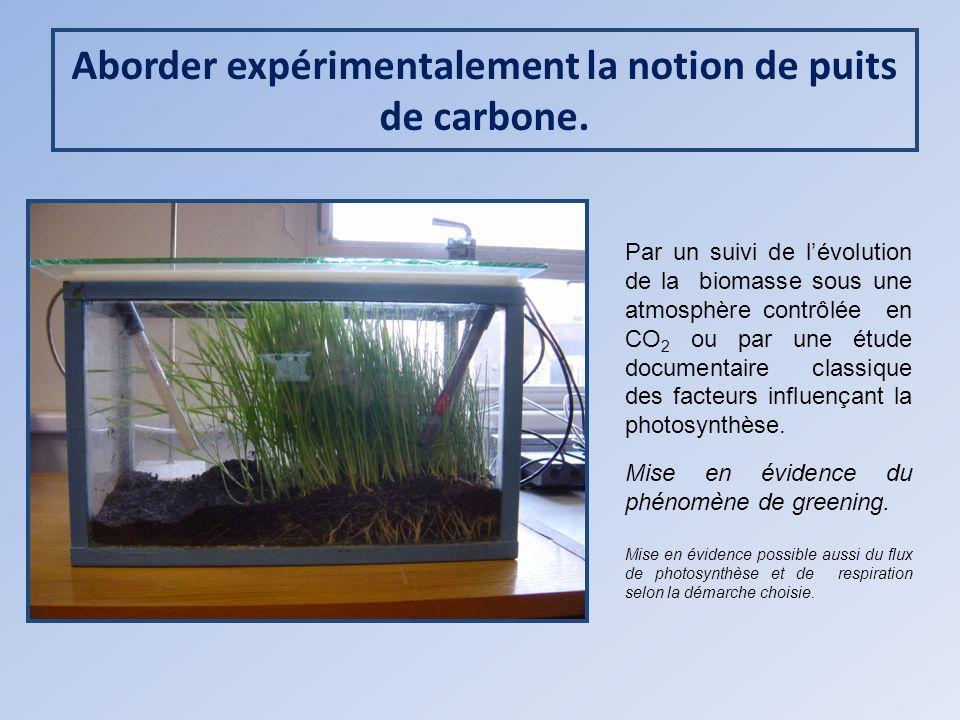 Aborder expérimentalement la notion de puits de carbone. Par un suivi de lévolution de la biomasse sous une atmosphère contrôlée en CO 2 ou par une ét