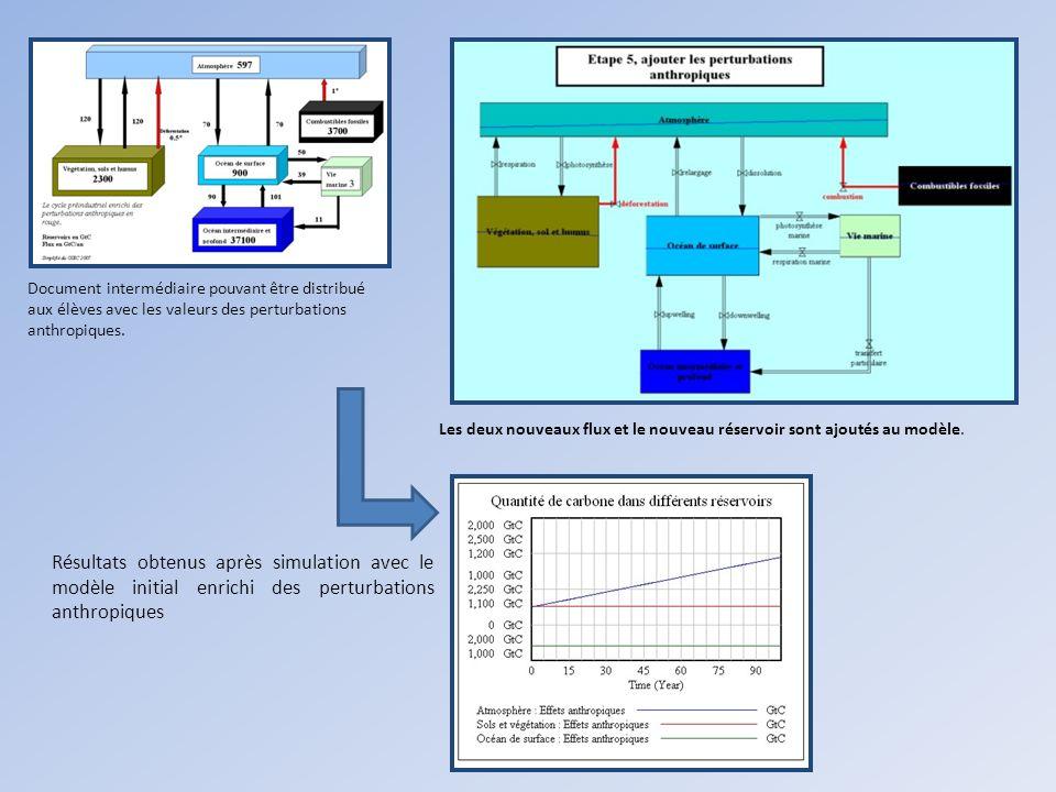 Les deux nouveaux flux et le nouveau réservoir sont ajoutés au modèle. Document intermédiaire pouvant être distribué aux élèves avec les valeurs des p