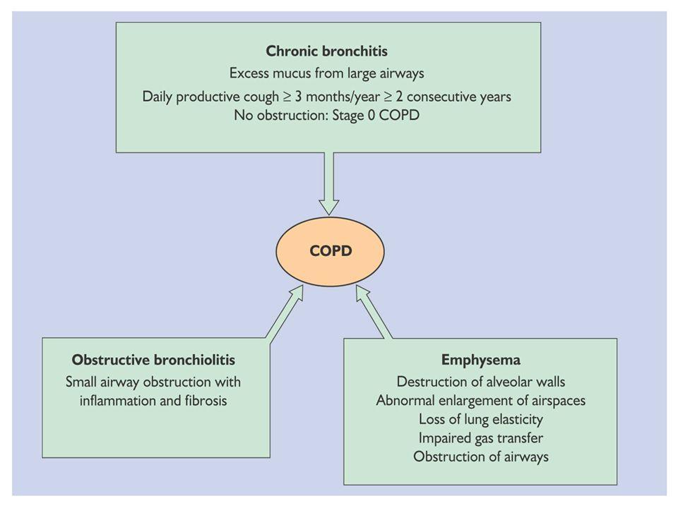 Bronchite chronique : Inflammation chronique des bronches proximales.