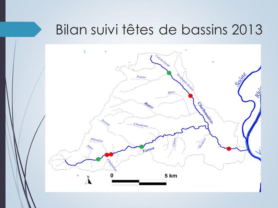 Bilan suivi têtes de bassins 2013