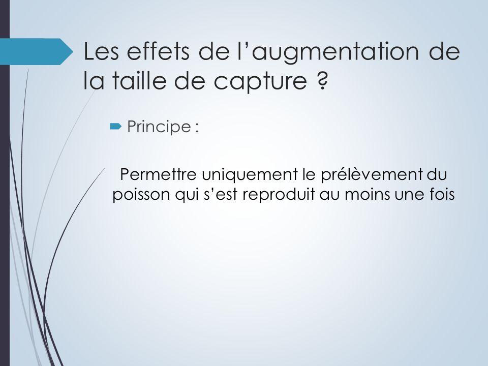 Les effets de laugmentation de la taille de capture .