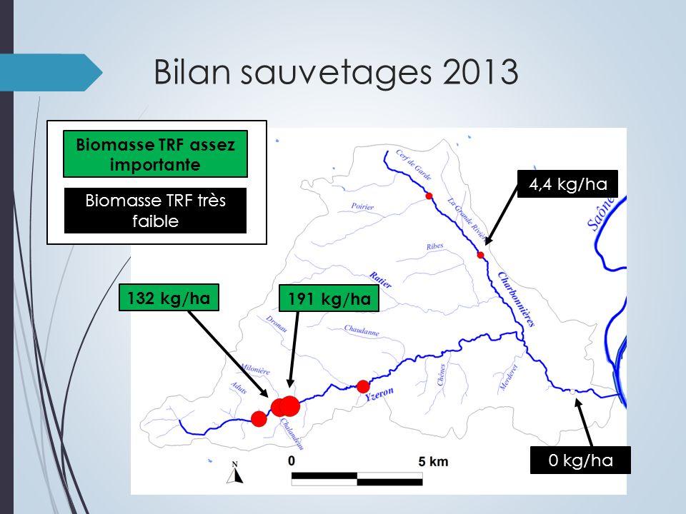 Zoom TRF sur lYzeron médian Pont des pêcheurs 100 kg/ha en 2010 132 kg/ha en 2013 Planche Billée 95 kg/ha en 2010 191 kg/ha en 2013