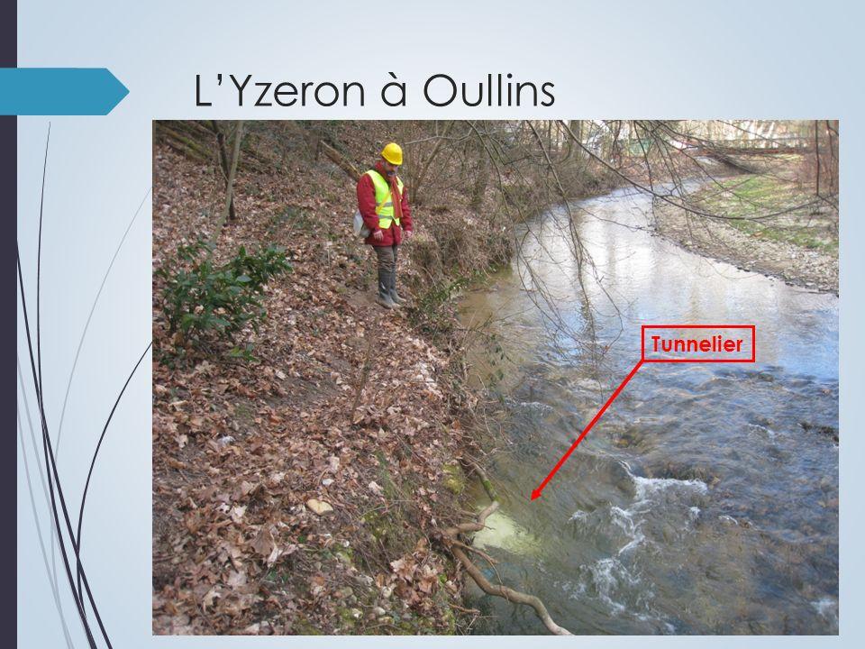 LYzeron à Oullins Tunnelier