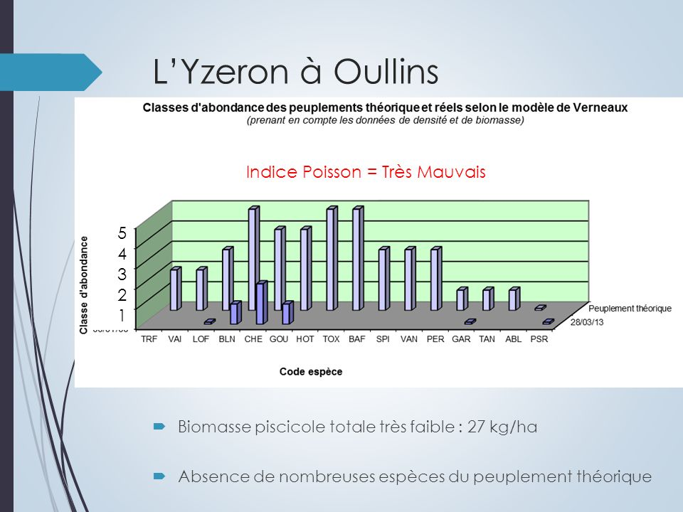 LYzeron à Oullins Biomasse piscicole totale très faible : 27 kg/ha Absence de nombreuses espèces du peuplement théorique 5 4 3 2 1 Indice Poisson = Très Mauvais