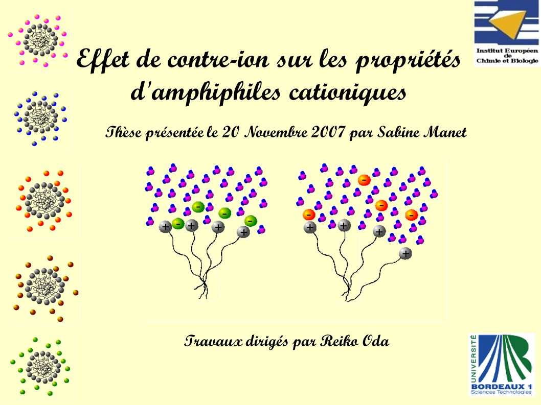 Conclusions Effet de contre-ion sur les propriétés d amphiphiles cationiques Hydrophilie PHASE SOLIDE PHASE AQUEUSE Cohésion de l état solide Affinité cation-anion Morphologie du contre-ion CRISTAUXSOLUBILITEMICELLISATIONMORPHOLOGIES Hydratation Structure