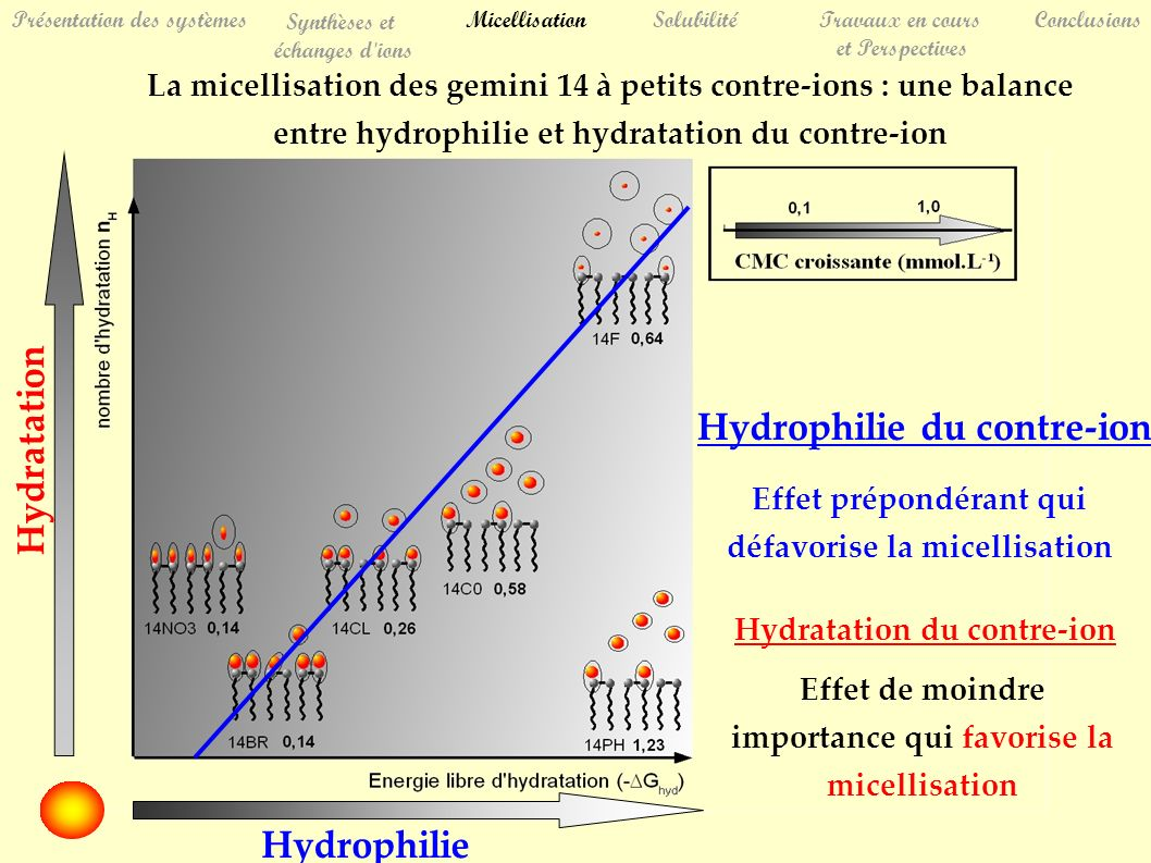 La micellisation des gemini 14 à petits contre-ions : une balance entre hydrophilie et hydratation du contre-ion Hydrophilie du contre-ion Effet prépondérant qui défavorise la micellisation Hydratation du contre-ion Effet de moindre importance qui favorise la micellisation Hydratation Hydrophilie SolubilitéTravaux en cours et Perspectives Conclusions Présentation des systèmes Synthèses et échanges d ions Micellisation