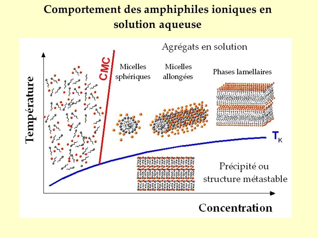 Concentration Micellaire Critique T Concentration minimale pour laquelle à une température donnée T, les amphiphiles s agrègent dans l eau pour former des micelles.